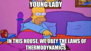 simpsons-cartoon-angry-homer-with-dialogue-young-lady-in-this-house-we-obey-the-laws-of-thermodynamics